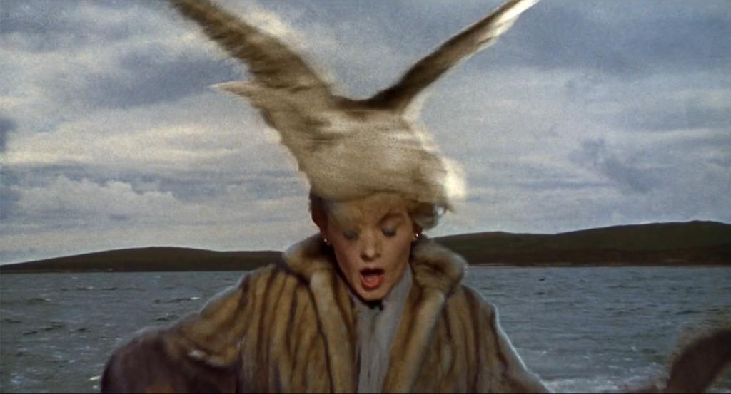 """שנייה לפני שהיא מגיעה עם הסירה חזרה לנמל תוקפת אותה ציפור באלימות והיא מדממת. פריים מתוך """"ציפורים"""" של היצ'קוק"""